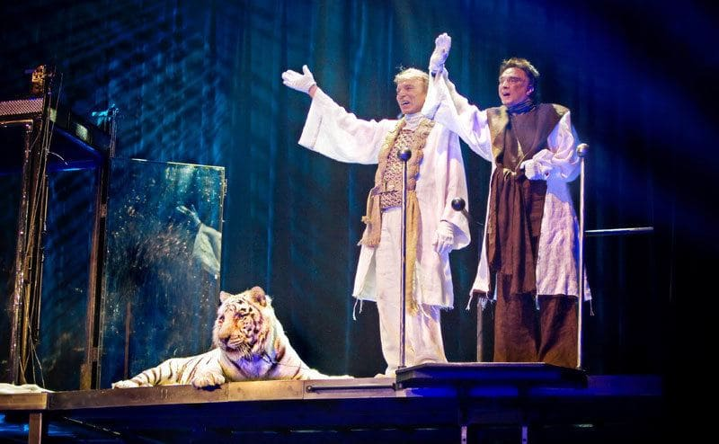 Siegfried and Roy's final performance standing on stage with a tiger.